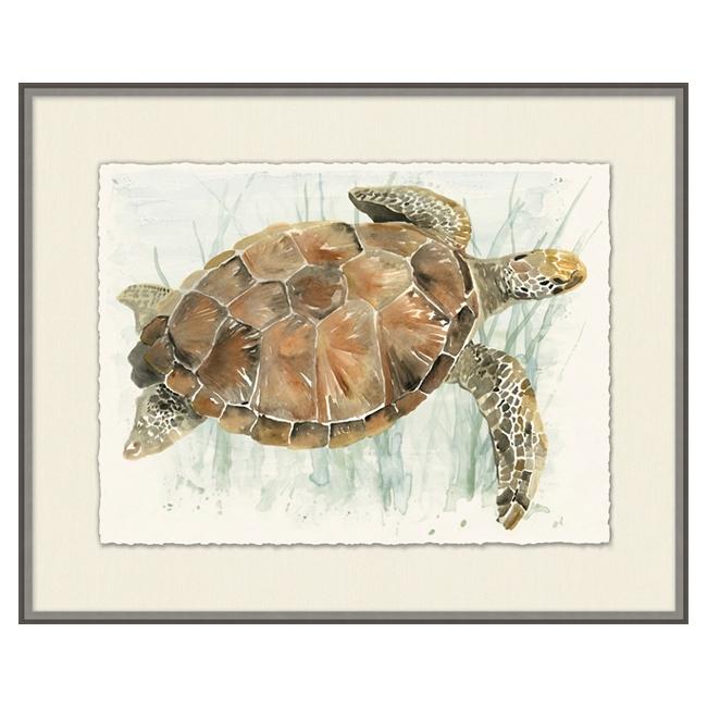 Watercolor Turtle I